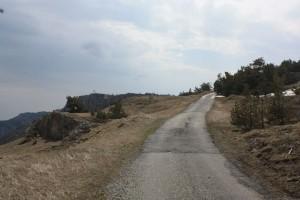романовское шоссе
