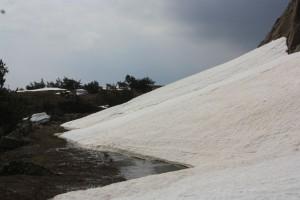 снег на старой тропе