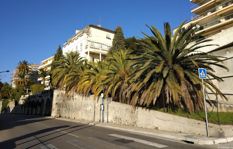 пальмы ницца