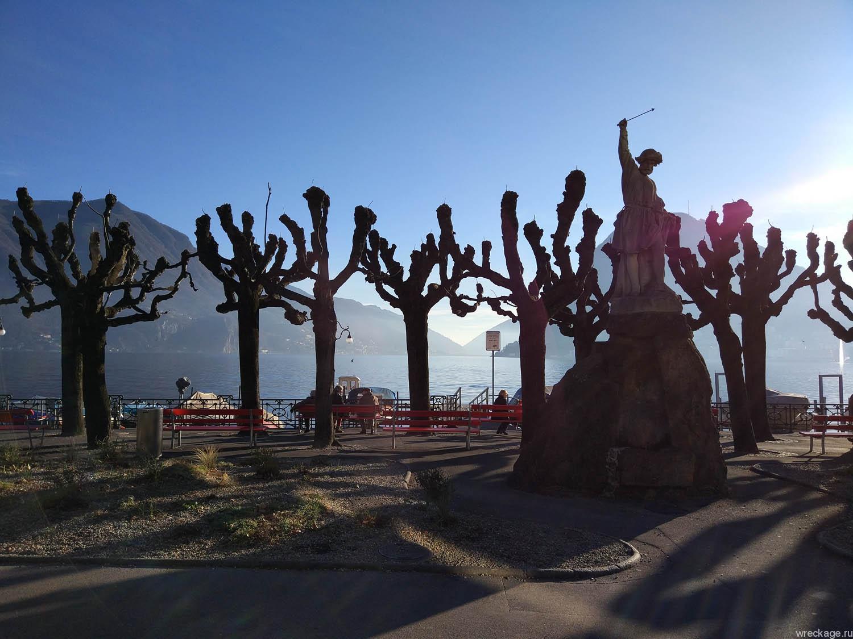 деревья лугано