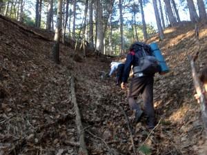 подъём в крыму в лес