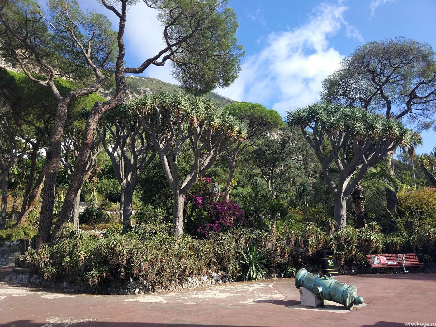 Ботанический сад Гибралтара и вечер в Ла-Линее.