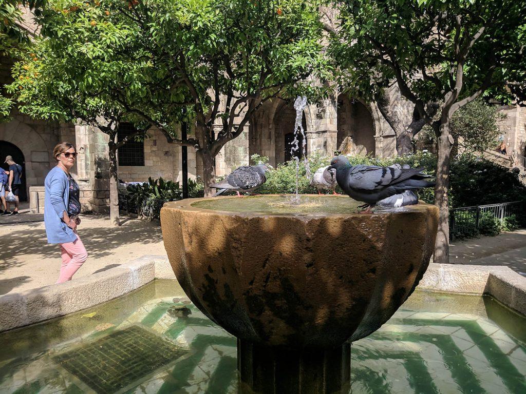 фонтаны дворы барселона